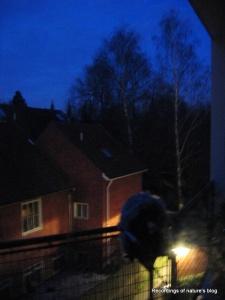 20100326 morning recording at balcony