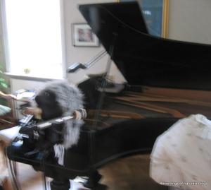 Recording of grand piano