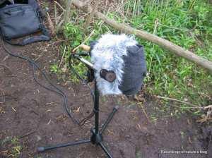 Recording dummy head