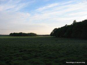Plains of Dyrehaven June 6th 2010