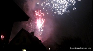 Fireworks sky, 2011-2012 Copenhagen