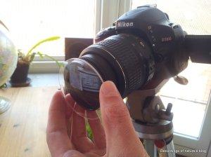 anti moiré filter uncut eyeglass lens