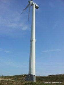 850kW - 80 meters wind turnbine