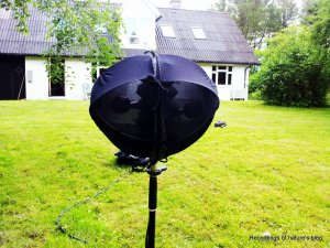 The recording head from the front