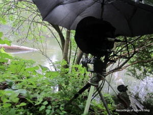 The recording setup; camera and recording head under the umbrella
